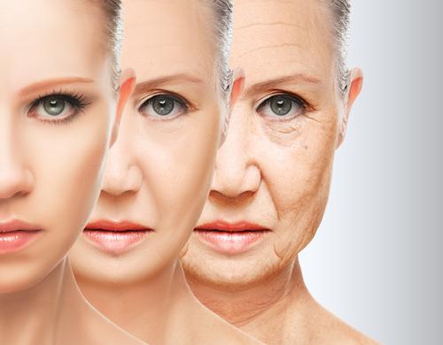 Bentley Wellness, Health, Wellness, Lifestyle, Aging