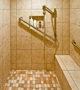 Handicap Shower System 2